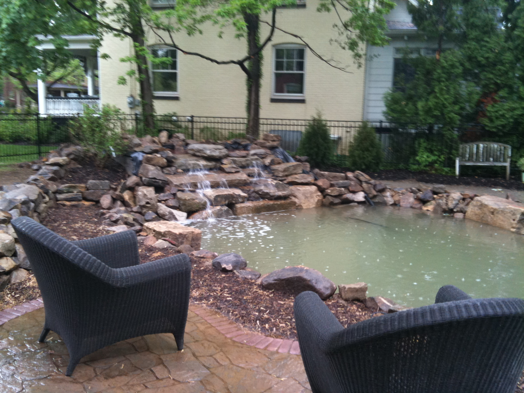 Pond keeping and construction a learning adventure in for Koi pond water murky